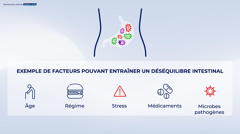 image https://www.saccharomycesboulardii.com/wp-content/uploads/2020/09/006_Artile-Gut-Imbalance-150x150.png