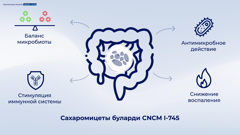 image https://www.saccharomycesboulardii.com/wp-content/uploads/2020/09/014_Single-strainarticle-2_2-6-150x150.png